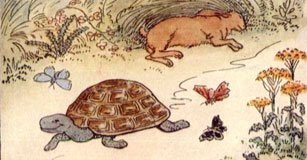 image of tortoise and hare