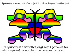 Exploring Line Symmetry Sample of Butterfly